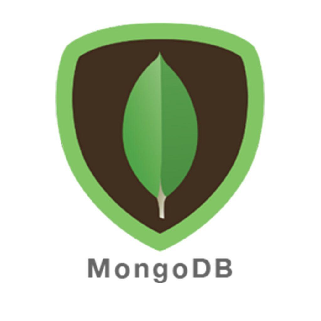 טכנלוגיות_0018_mongodb